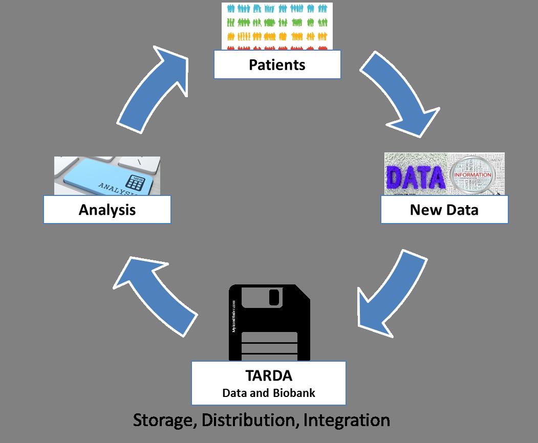 TARDA Datenbank Skizze